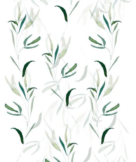 BAMBÚ Wallpaper